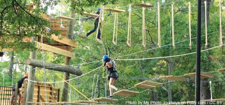 Una aventura de alturas en Treetop Quest