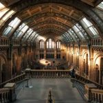 MUSEO DE BUFORD
