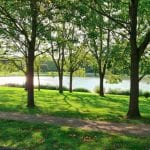 LITTLE MULBERRY PARK